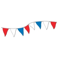 Multi-Color Pennants - Red / White / Blue